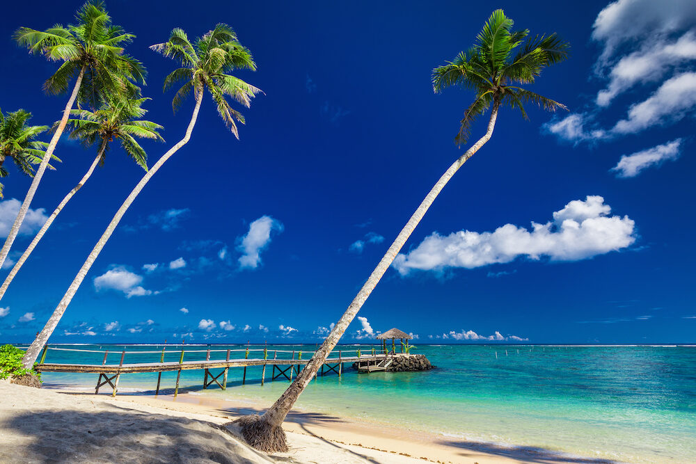 Tropical beach scene with coconut palm trees and jetty, South Pacific, Samoa Islands