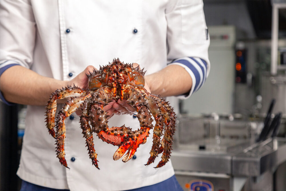Chef of premium michelin restaurant in white uniform is holding fresh big kamchatka crab. Concept useful seafood in the menu of elite five star hotel