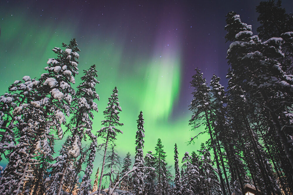 Beautiful picture of massive multicoloured green vibrant Aurora Borealis Aurora Polaris also know as Northern Lights in the night sky over winter Lapland Norway Scandinavia