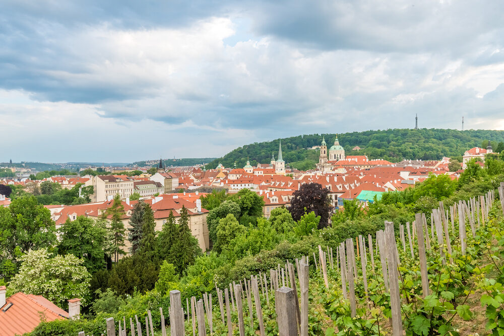 View of Vineyards in Prague of Czech Republic.