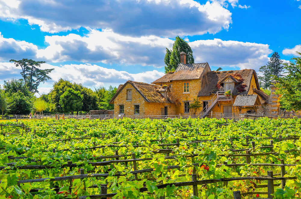 European rural landscape an old French house with a vineyard