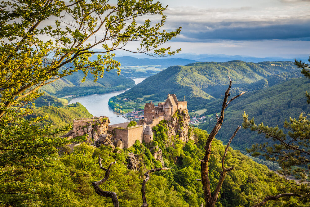 Classic aerial view of historic Aggstein castle ruin with famous Danube river in the background in beautiful golden evening light at sunset in summer Wachau valley Lower Austria region Austria