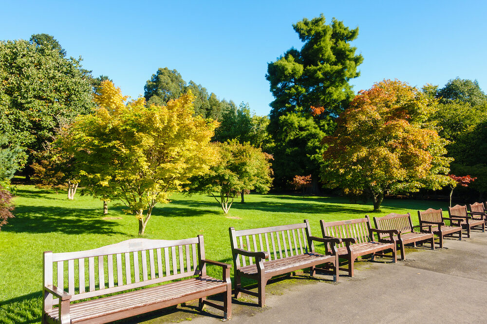 Public Roath Park with it's row of benches and beautiful trees during a sunny morning at the beginning of autumn.