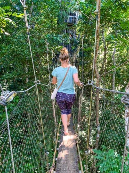 Falealupo Canopy Walk - Samoa
