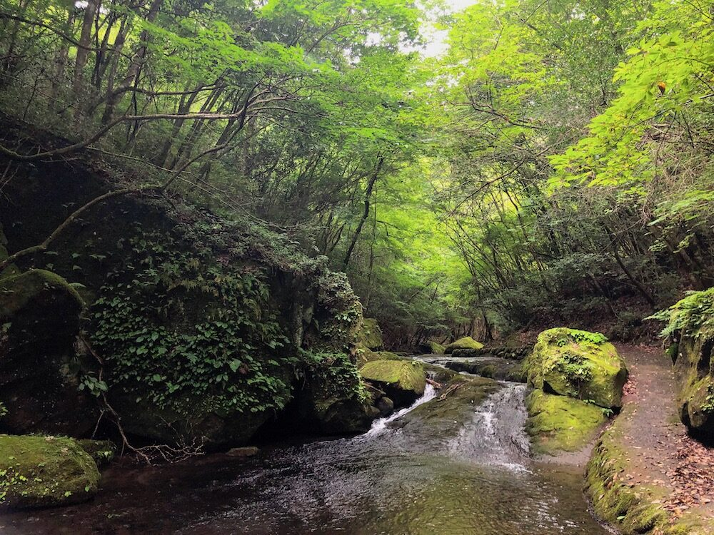 Japan - Oita