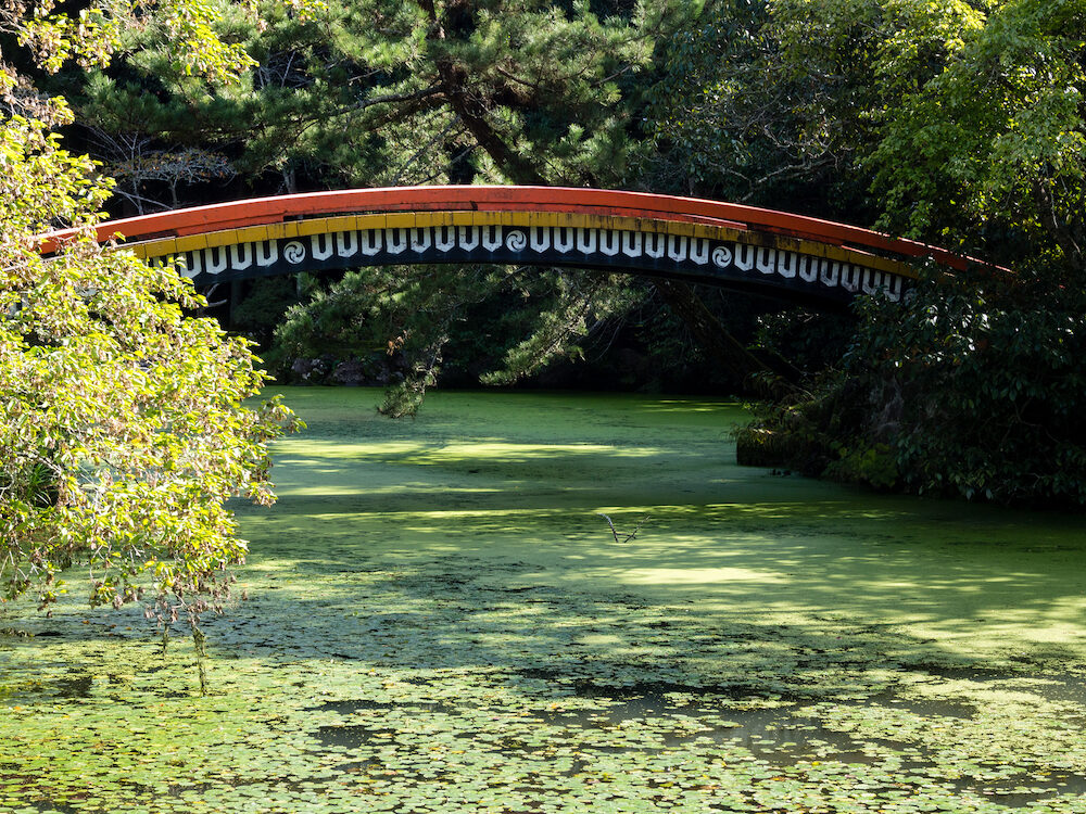 Sunlit Japanese garden with green pond and red arching bridge at Usa shrine in Oita prefecture