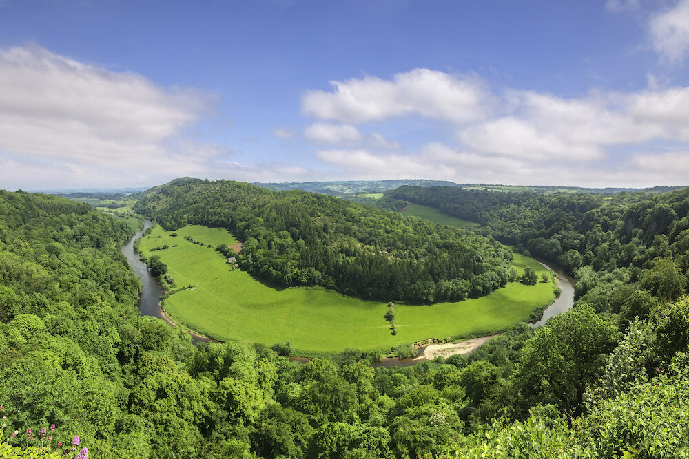 The Wye Valley from Symonds Yat Rock, Gloucestershire, England, UK, in early summer.