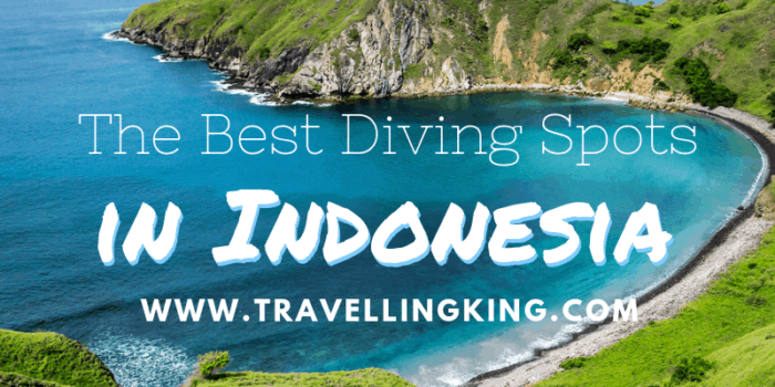 The Best Diving Spots in Indonesia