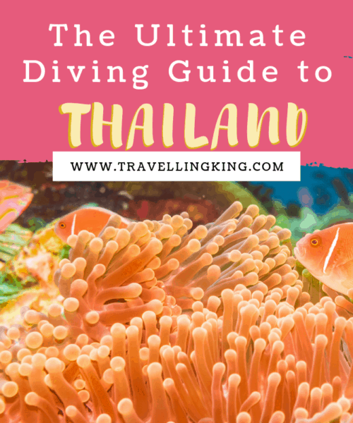 The Ultimate Diving Guide to Thailand