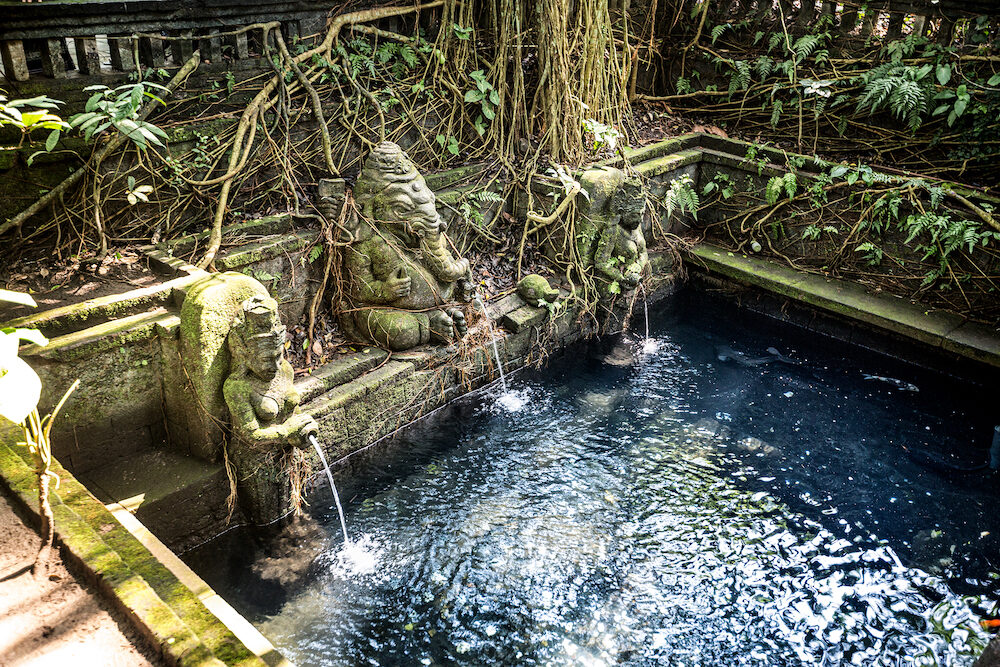 Sacred pool in temple at Monkey Forest Sanctuary in Ubud, Bali,Indonesia