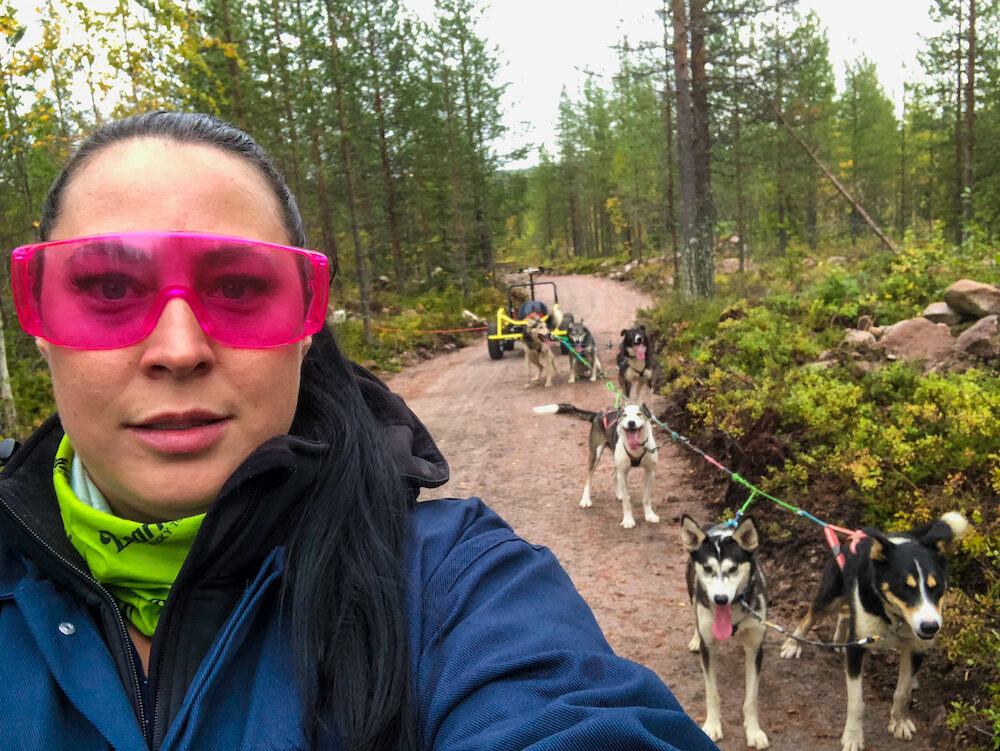 Born to Run - Husky excursion at Bearhill Husky Kennels in Finland