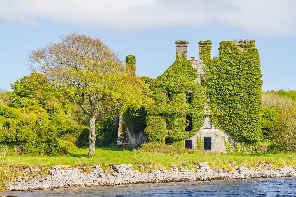 Corrib River, natural vegetation and Menlo Castle, Galway, Ireland
