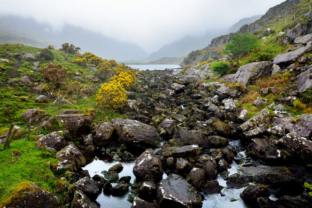 The River Loe and narrow mountain pass road wind through the steep valley of the Gap of Dunloe, nestled in the Macgillycuddy's Reeks mountains, County Kerry, Ireland