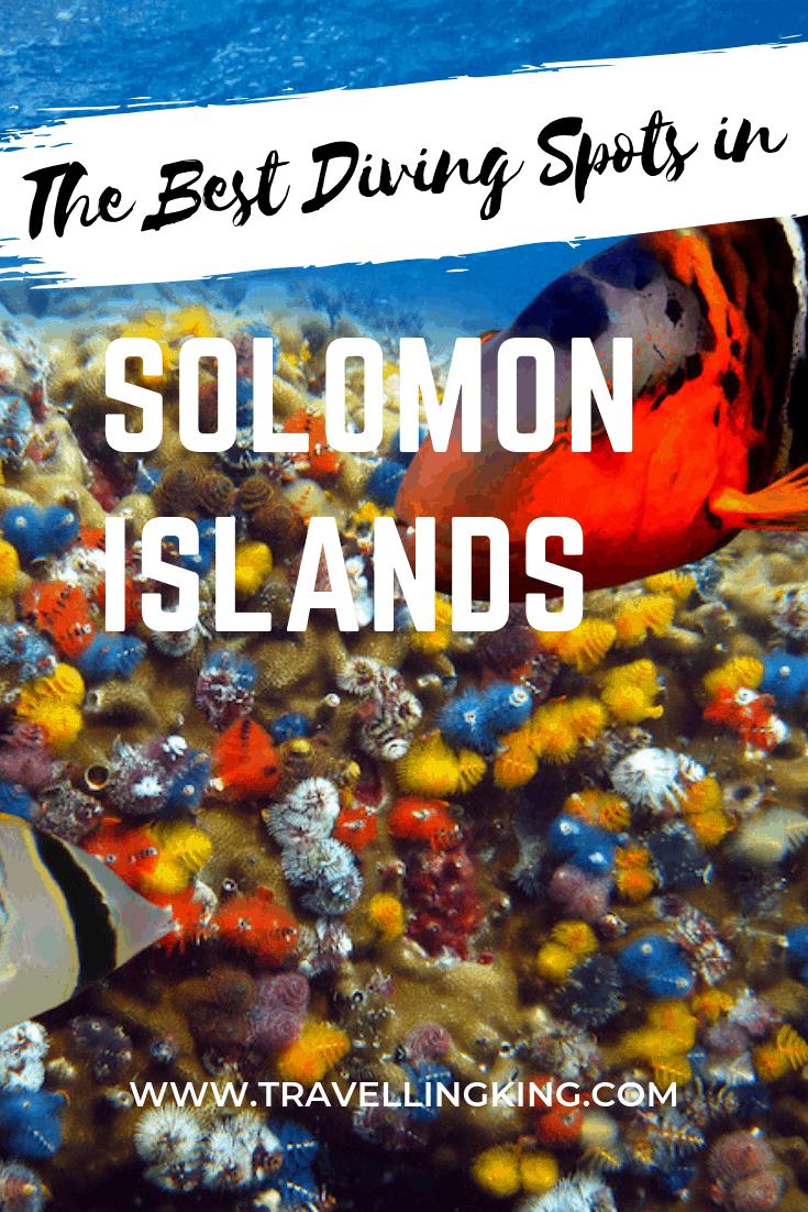 The Best Diving Spots in the Solomon Islands