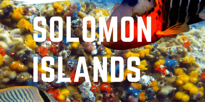 The Best Diving Spots in the Solomon Islands