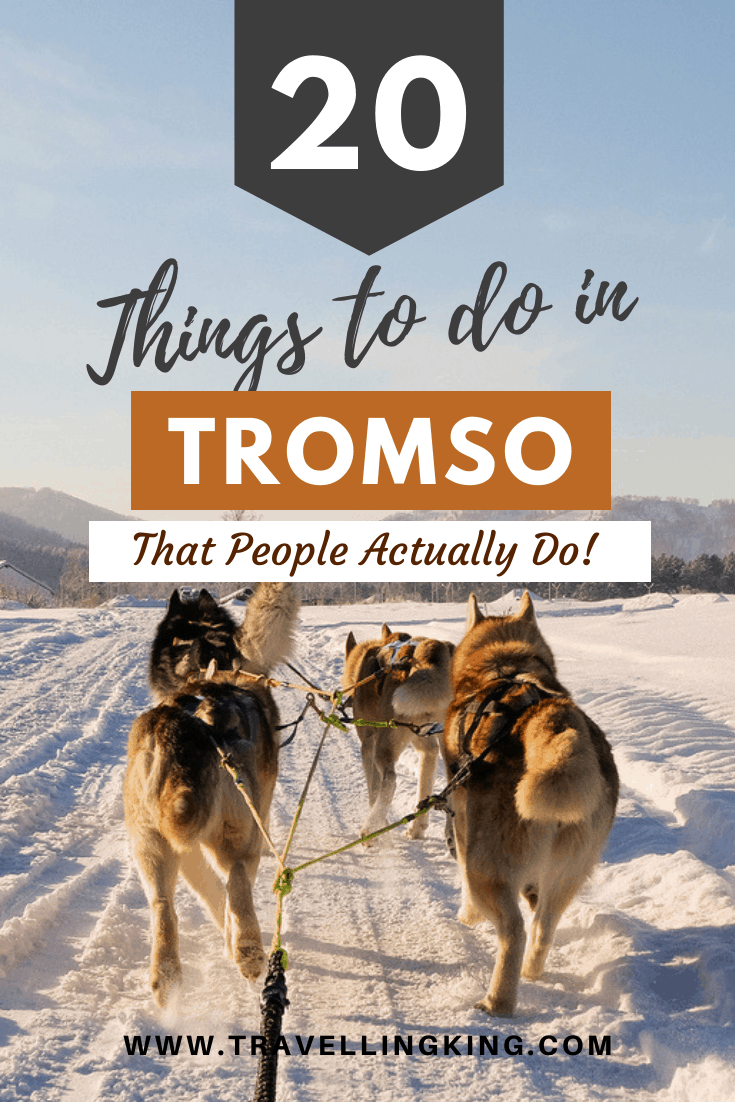 20 Things to do in Tromso - That People Actually Do!