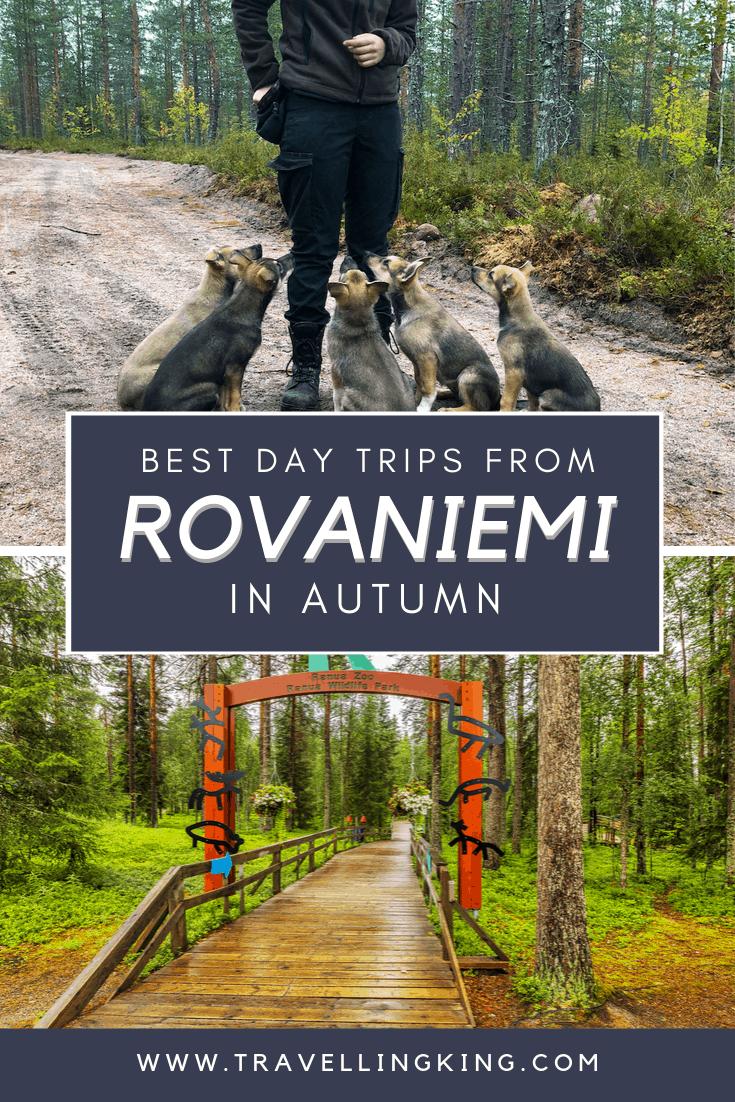 Best day trips from Rovaniemi in Autumn