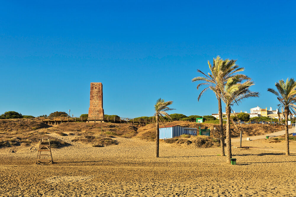 Palm trees and ancient stone tower on Cabopino beach. Coastline of ?arbella. Andalusia province, Spain.