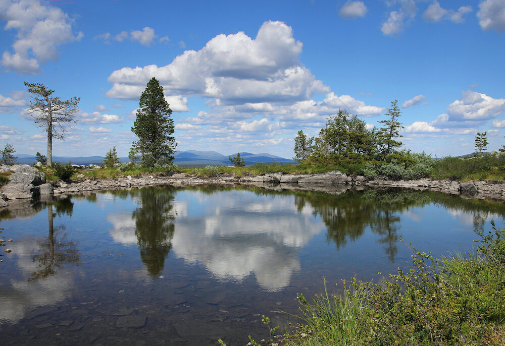 Small pond on Sarkitunturi fell top reflects the blue sky and white clouds