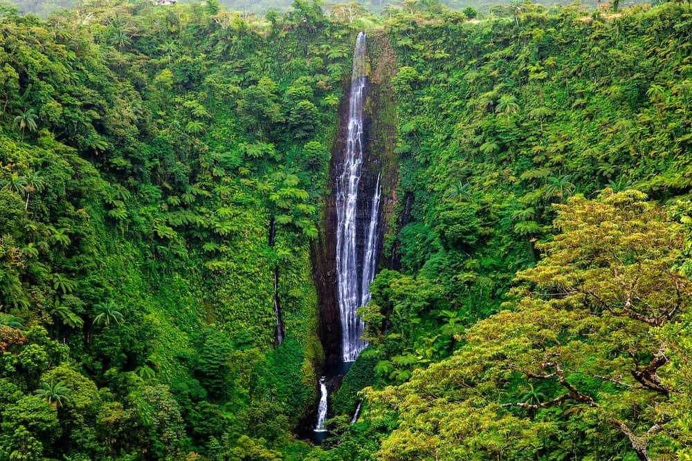 Vibrant tall Papapapaitai falls in the rain forest of Upolu island, Samoa