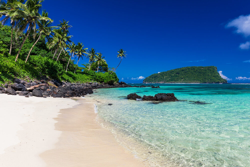 Vibrant tropical Lalomanu beach on Samoa Island with coconut palm trees