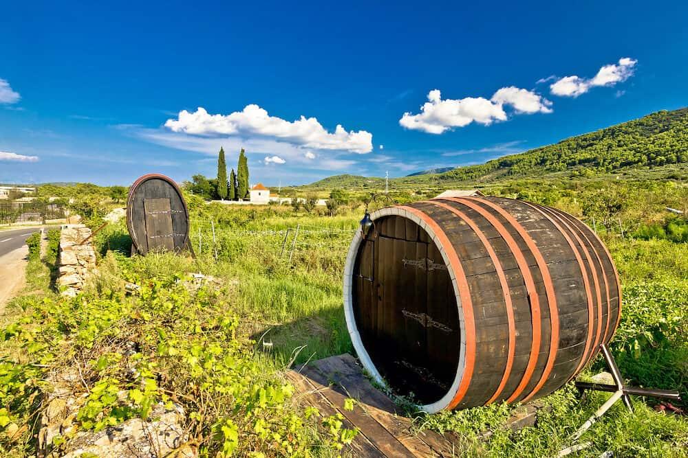 Wine barrels on Stari Grad plain UNESCO world heritage site in Hvar island Dalmatia Croatia