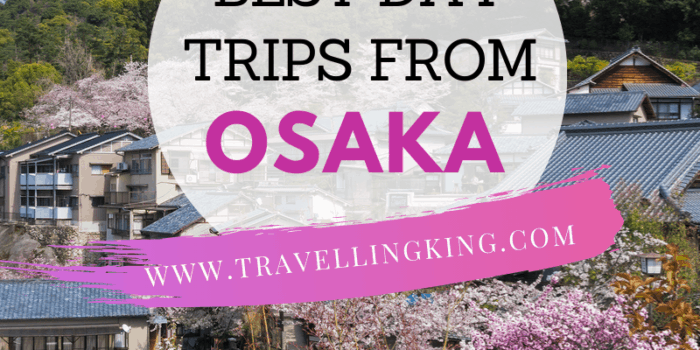 Best Day trips from Osaka