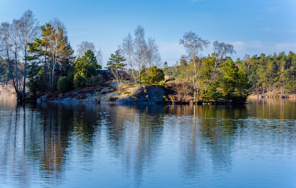 small island in the middle of lake of delsjon in gothenburg sweden during early spring