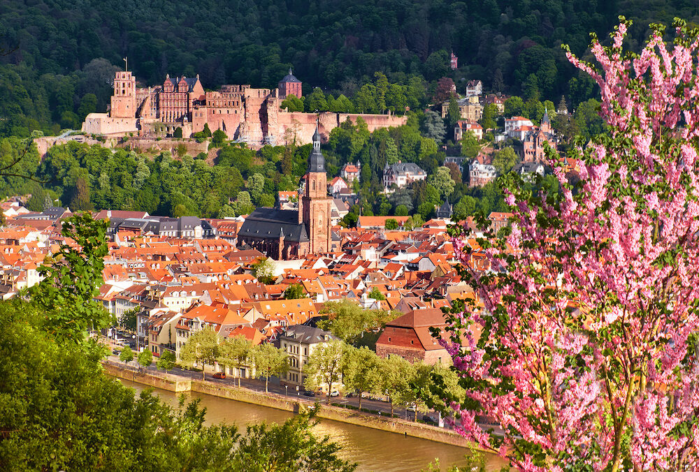 Heidelberg and ruins of Heidelberg Castle (Heidelberger Schloss) in a beautiful day in Spring. Picture was taken in Heidelberg, Germany, from the hill across the river.