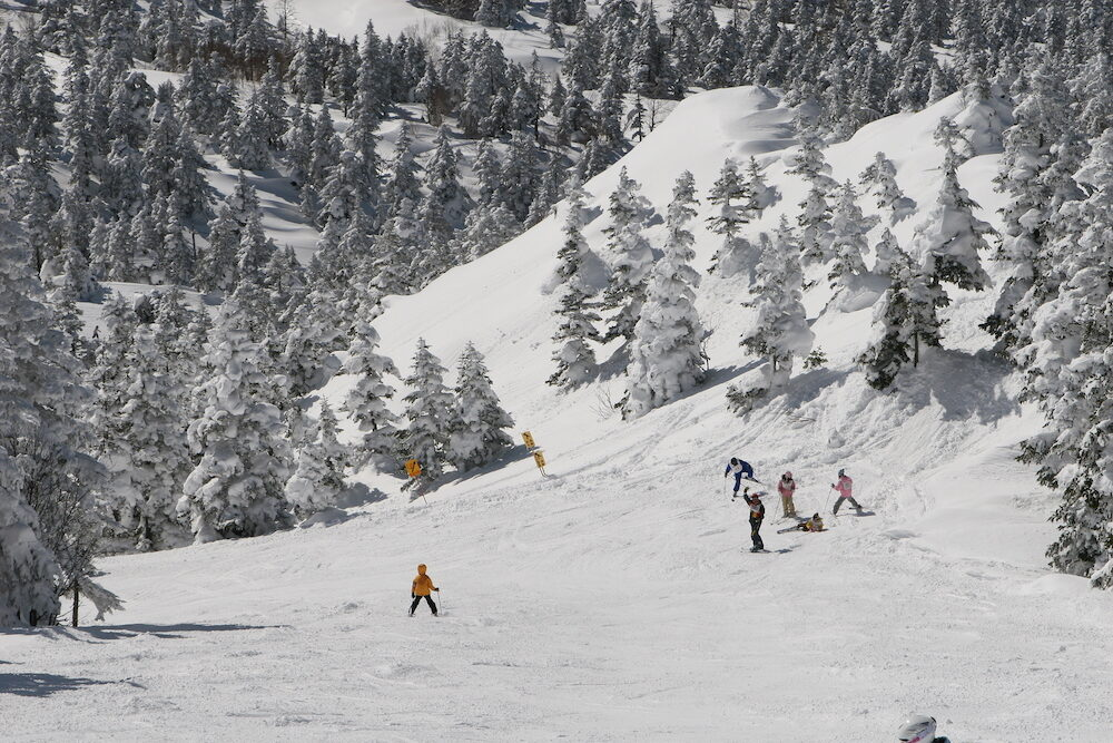 snow time in ski resort