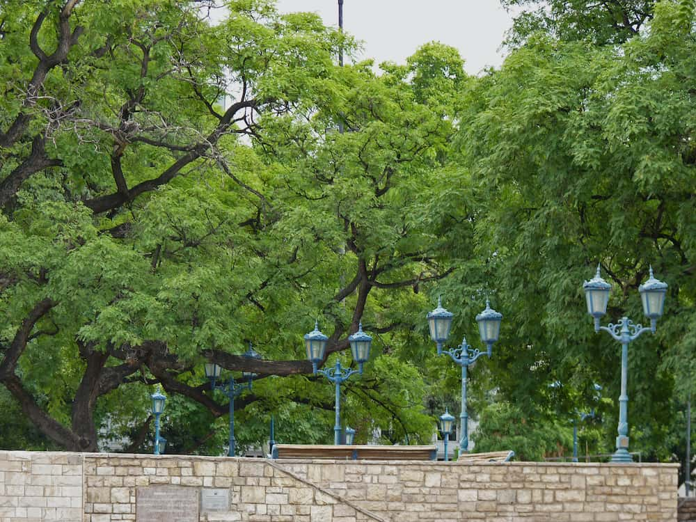 Blue vintage street lights in a city park. The picture was taken in Mendoza Argentina.