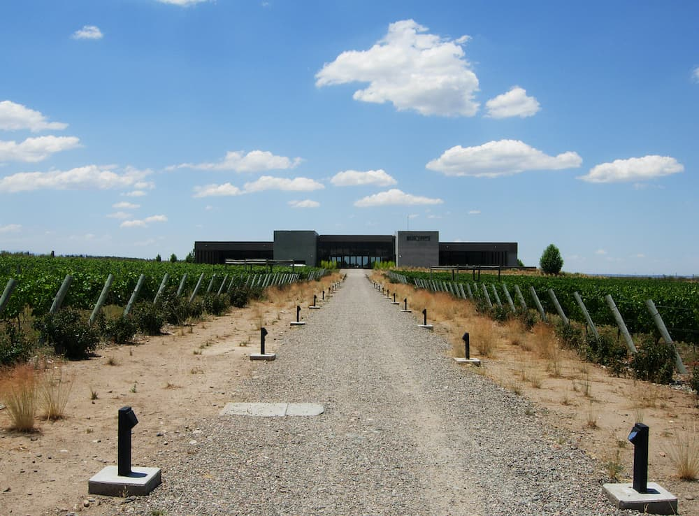 MENDOZA, ARGENTINA Perspective of vineyard and Salentein Winery modern building in Valle de Uco, Mendoza