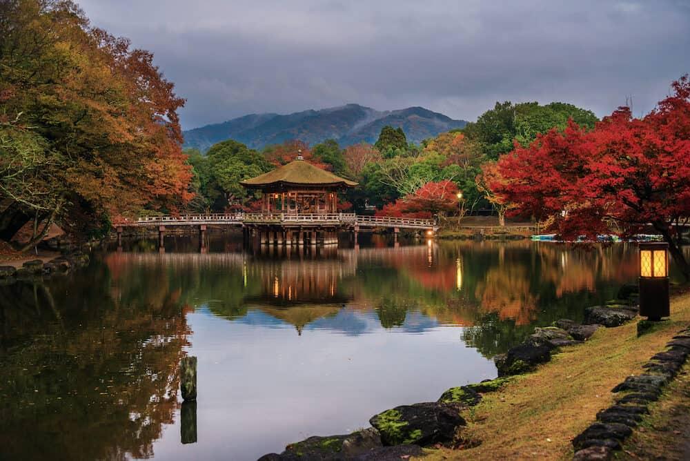 NARA, JAPAN - Evening in Nara Park with autumn colors in Nara, Japan