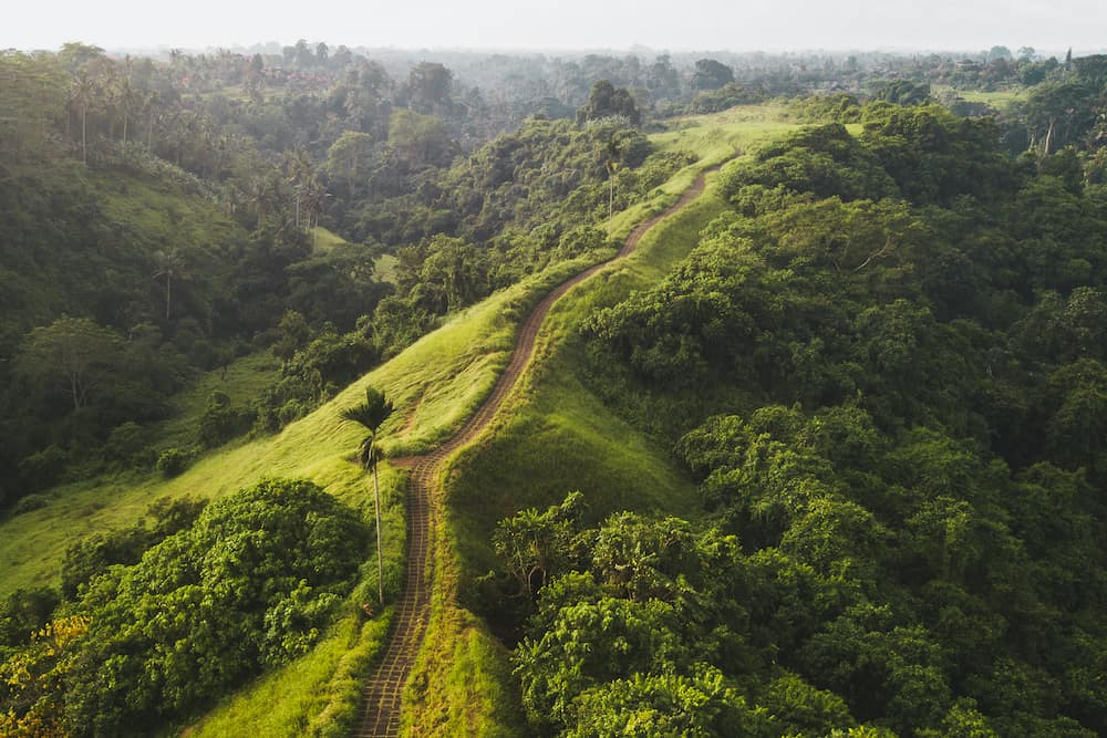 Aerial view of Campuhan Ridge Walk , Scenic Green Hill in Ubud Bali