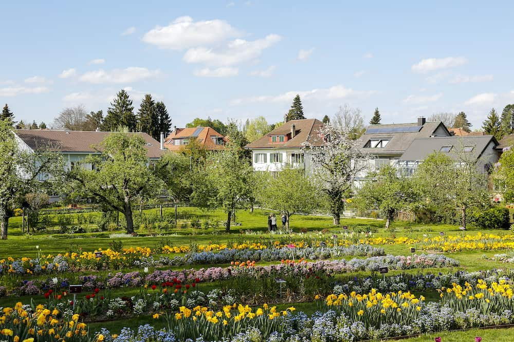 Bern Switzerland - Variety of flowers planted in several rows together with trees create a garden behind which there are several residential houses. A few people can be seen there.
