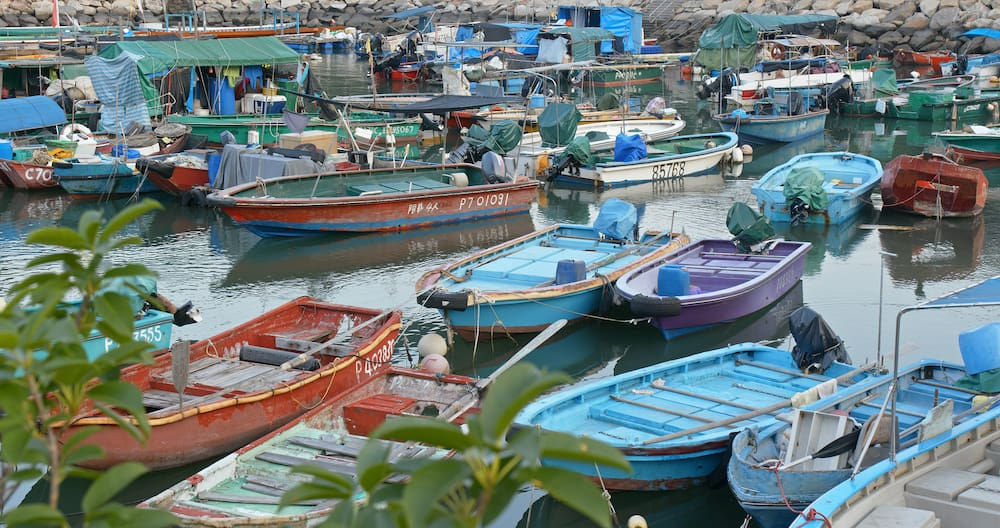 Cheung chau, Hong Kong. Crowd of small boats in the sea of Cheung chau island