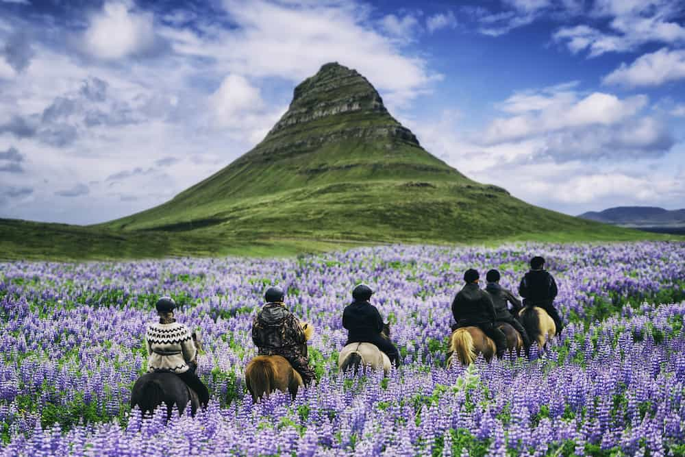 Tourist riding horse at Kirkjufell mountain landscape and waterfall in Iceland summer. Kirjufell is the most beautiful landmark and the most photographed travel destination that attracts visitors to Iceland.