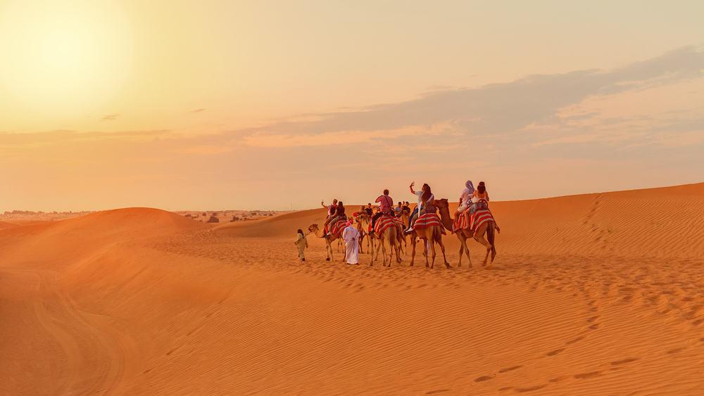 DUBAI, UAE - desert safari tourists riding camels - travel concept with people on caravan exploring sand dunes in Dubai desert - adventure in UAE tourism