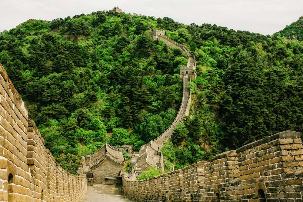 Great Wall of China in Summer. Mutianyu section near Beijing. May