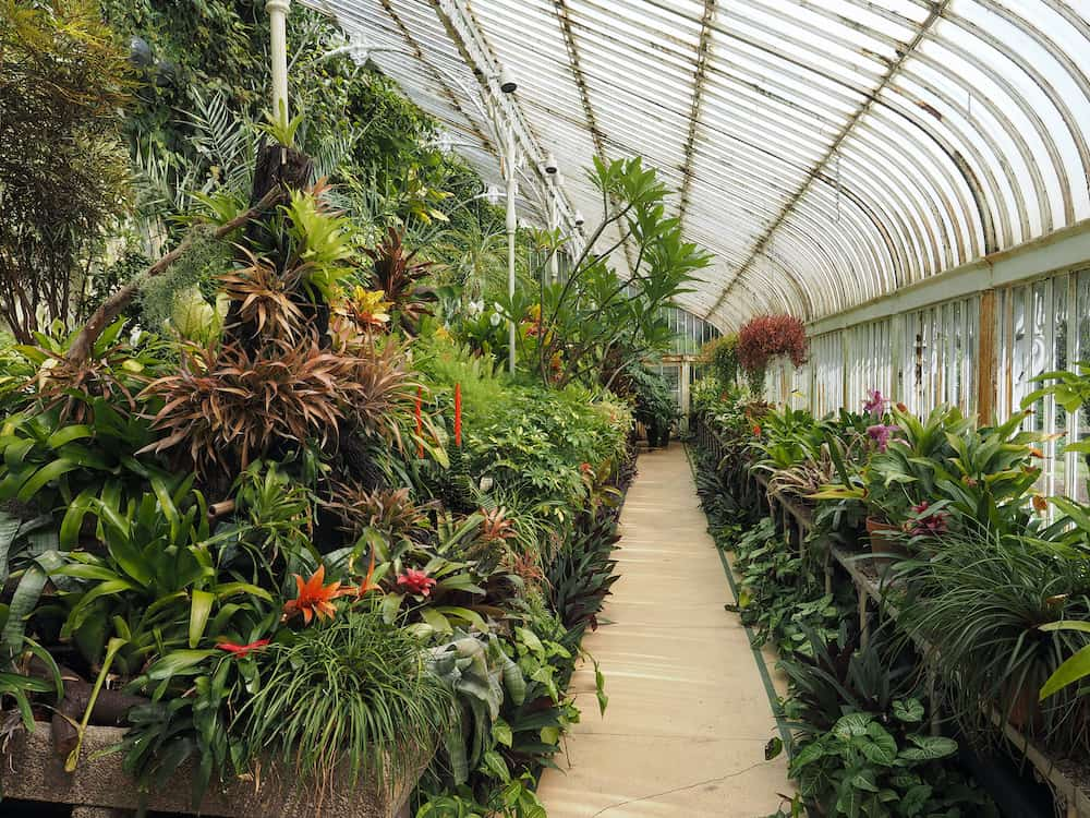 BELFAST, UK - : The Palm House in the Botanic Gardens
