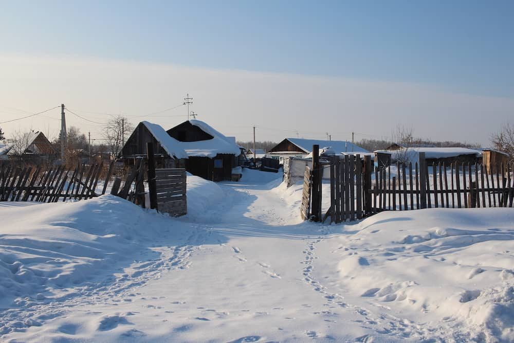 footprints in the snow lead to the courtyard of a rural house in winter behind a wooden fence in the village