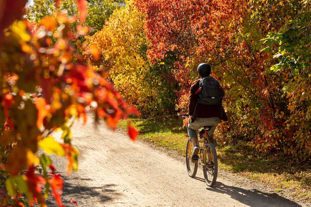 Cyclist riding a bike on Des Carrieres cycle path in Montreal, Canada