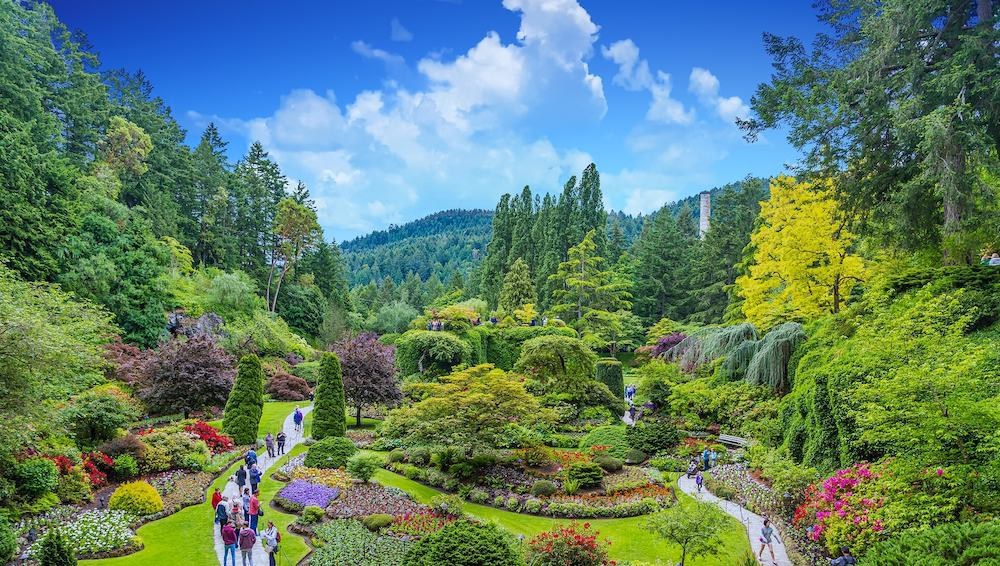 VICTORIA, BRITISH COLUMBIA - Butchart Gardens, near Victoria, receive over a million visitors each year, and have been designated a National Historic Site of Canada.